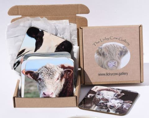 Cattle Breed Coasters